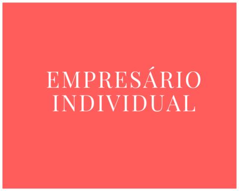 EI - Empresário Individual